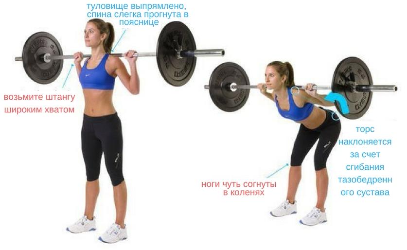 Спина. Зачем её качать?   natural fitness   яндекс дзен.